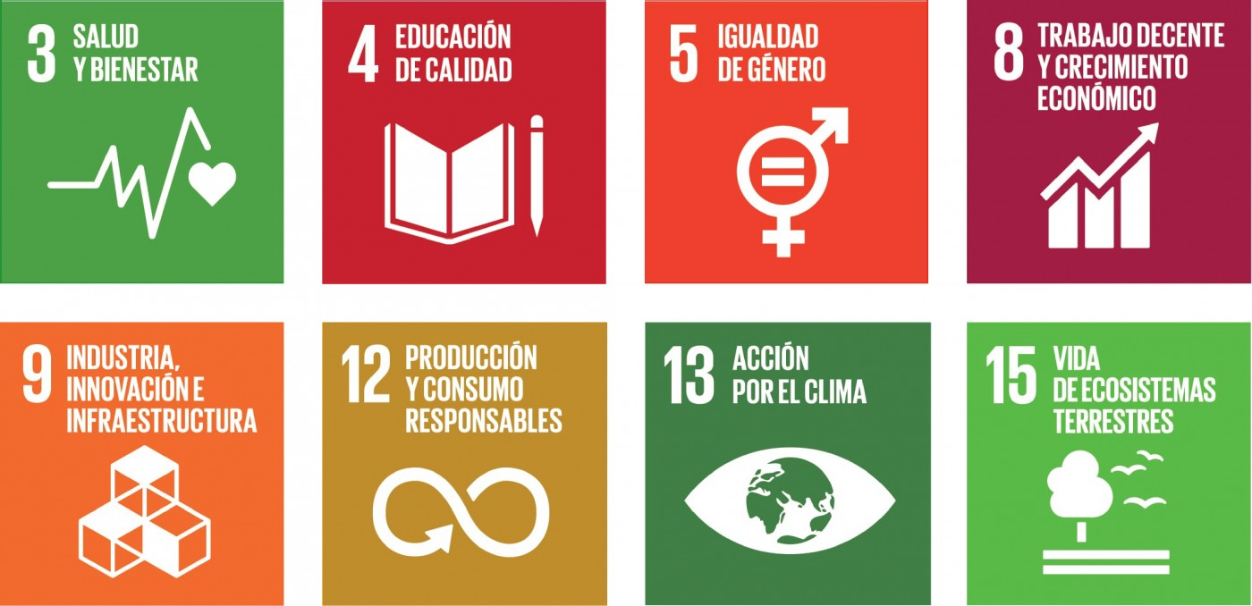 The eight United Nations sustainable development goals that Keller impacts: Good health and wellbeing;Quality education; Gender equality; Decent work and economic growth; Industry innovation and infrastructure; Responsible consumption and production; Climate action; Life on land